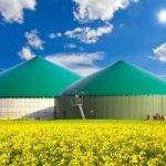 biyogaz enerji santrali yatırımı